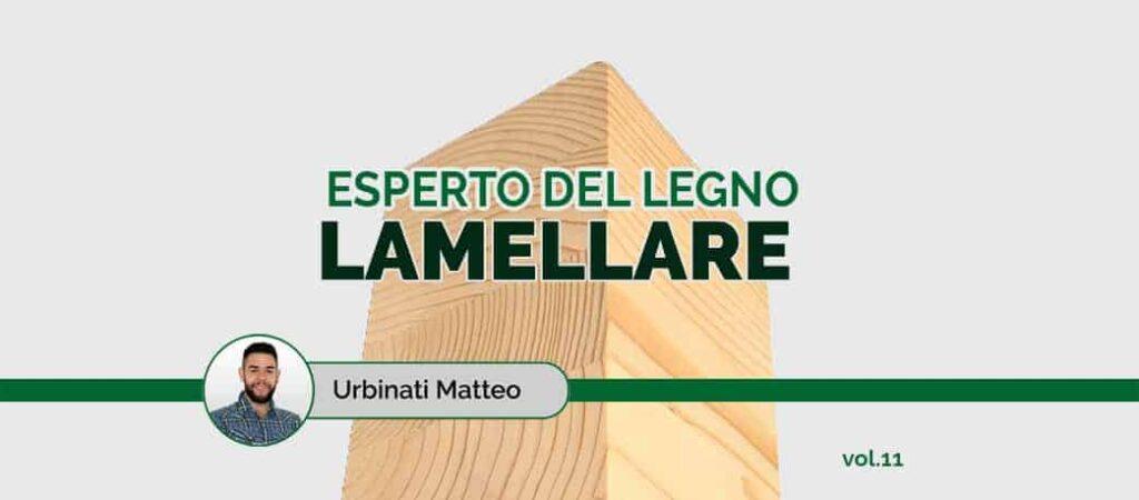 """rubrica """"esperto del legno lamellare"""" volume 11"""