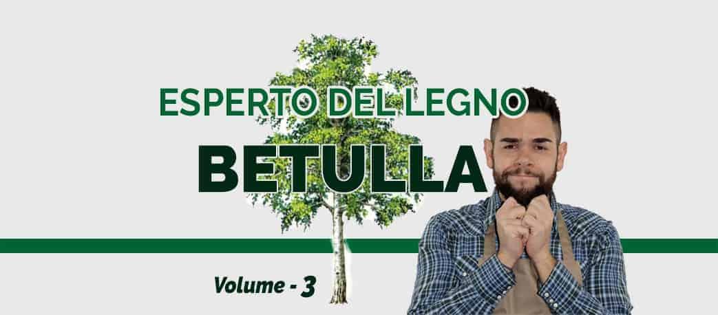 Legno di Betulla - Esperto del legno
